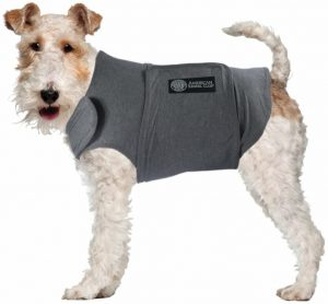 Top 10 best dog anxiety vests in UK 2021