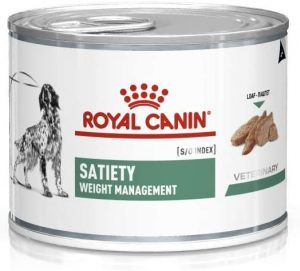 The 10 best wet dog food for weight loss in 2021