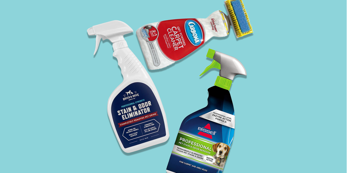 The Best carpet stain removers in the UK 2021
